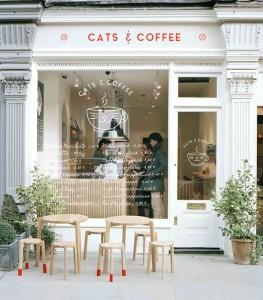 Ideias para aumentar as vendas de um café, padaria, ou confeitaria.