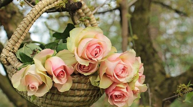 Como aumentar as vendas da sua loja de flores (florista)